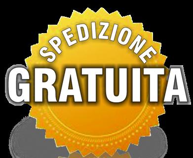 logo-spedizione3.png